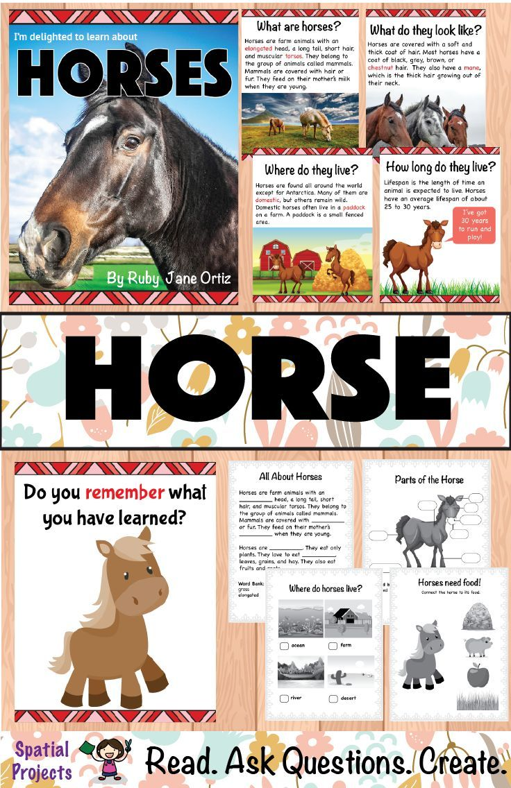 Check Out This All About Horses Nonfiction Unit For Your 1st 2nd Or 3rd Grade Studen Literacy Center Activity Farm Animals Activities Unit Studies Homeschool [ 1136 x 736 Pixel ]