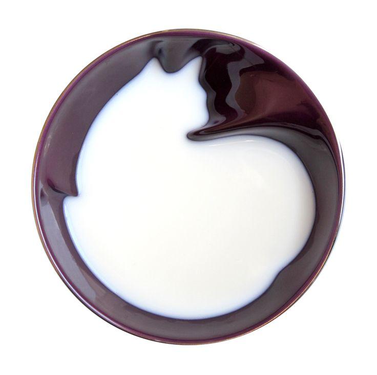 Un bol de lait Minou?