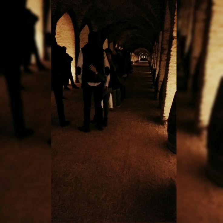#bodega #realcortijo, recorriendo las cuevas de la bodega, una galería de casi medio km de largo, un viaje por el tiempo, s.XVIII