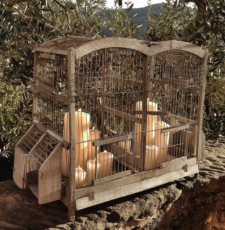 Candles in the cage