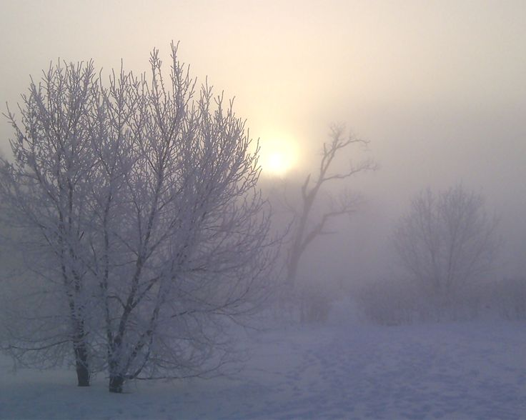 A Misty morning by the Lake in winter.