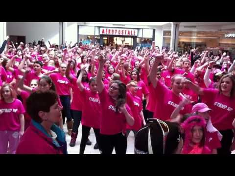 """Lipdub """"Stand Up"""" - Parkview Pink Shirt Day - YouTube"""
