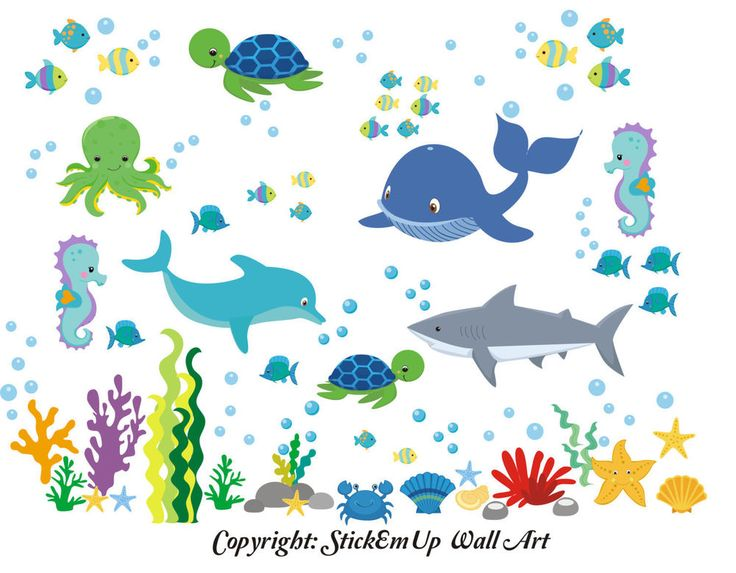 "Sea Ocean Marine Life Reusable Removable Wall Decals Baby Nursery Art 50"" x 65"""