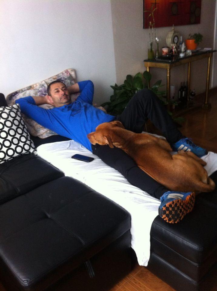 Estará cómodo ?