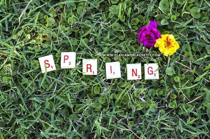Spring is coming!! :) ~ Creative Photography ~ www.flaviamorlachetti.com
