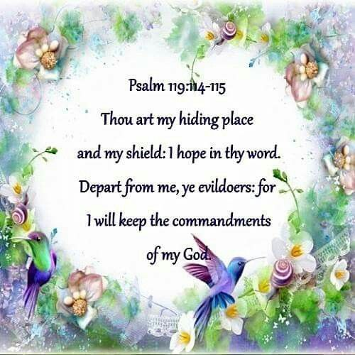 Psalm 119: 114-115 KJV