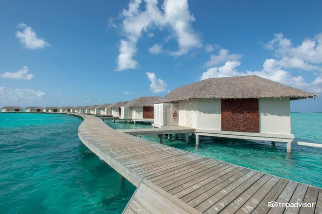 17 best images about maldivas cinnamon dhonveli on. Black Bedroom Furniture Sets. Home Design Ideas