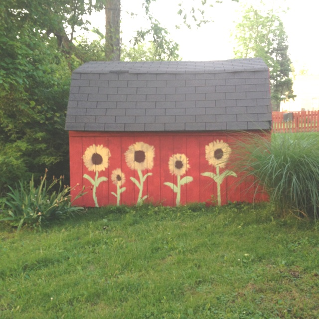 Painted shed - big flowers