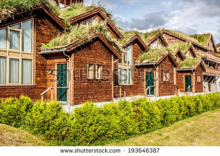 Typical norwegian house with grass on the roof