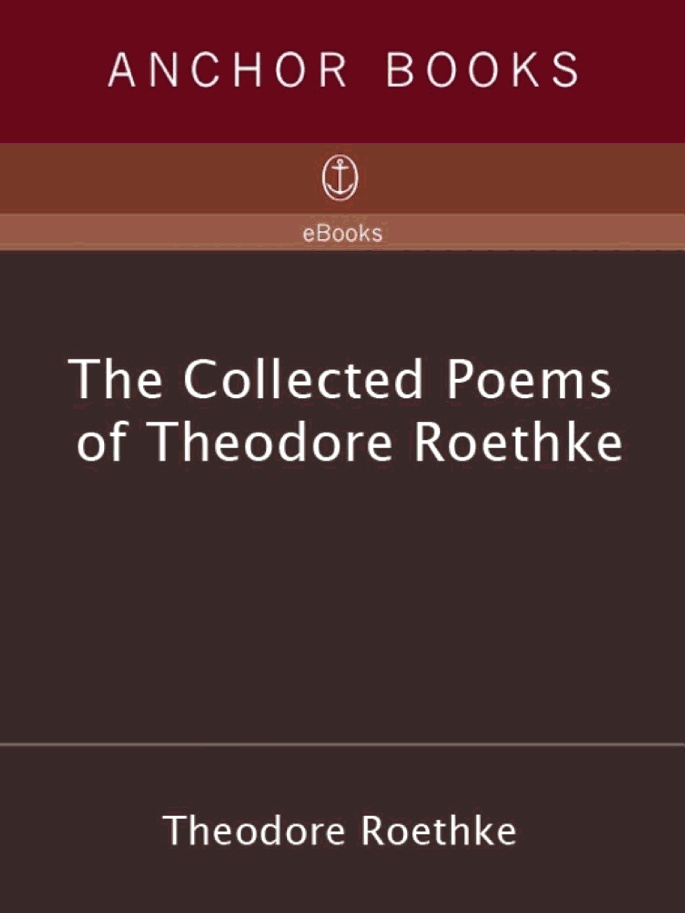 an analysis of the poetry of theodore roethke Poems by theodore roethke theodore huebner roethke [1908-1963] was a talented american poet who was regarded as one of the most accomplished and influential poets of his generation.