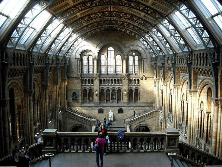 Or go check out the wonders of nature at the Natural History Museum, for free. | 57 Reasons Living In London Ruins You For Life