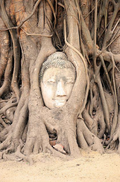 MYANMAR   Freiwilligenarbeit im Ausland   Praktika im Ausland   Sprachkurse   Roadtrips uvm.   www.academical-travels.de