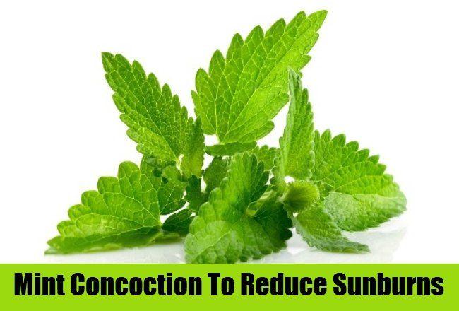 Natural Herbal Supplements | AyurvedicCure.com - https://www.ayurvediccure.com/top-home-remedies-for-soothe-sunburns/