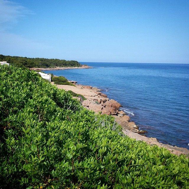 Recorriendo la #viaverde entre #Benicassim y #Oropesa. #Belleza #verde #vegetacion #mar #sol #paisaje #yoga #calma #azul #cielo #turismo #perfecto #calas #BenicassimParaiso #paradise #instagood