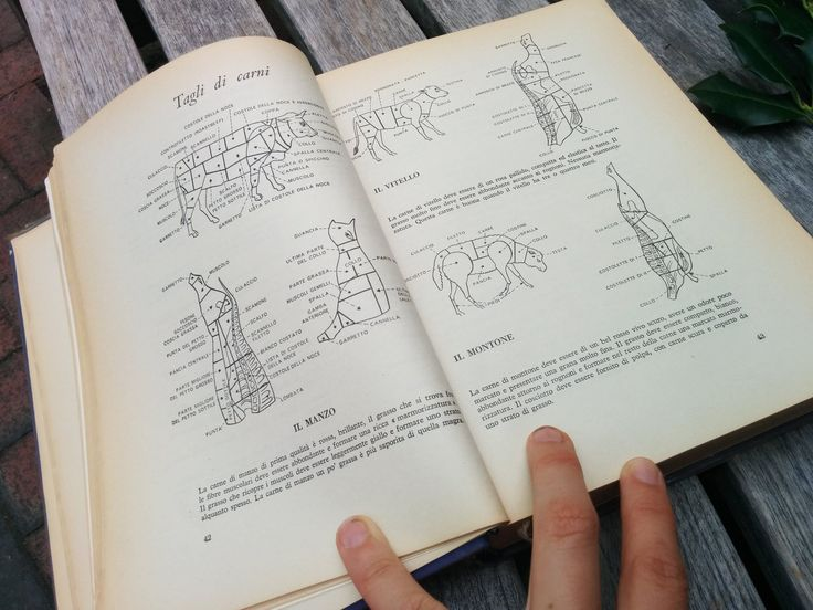 Parts of cow, sheep and veal from the best Italian cookbook: The Silver Spoon!