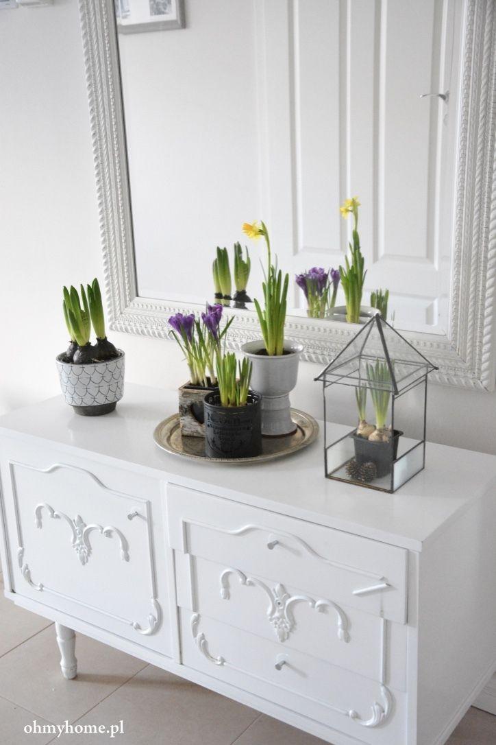 Wiosna w domu - wiosenne inspiracje. #hydrobox #hydroboxpl #kwiaty #hiacynty #zonkile #krokusy #inspiracje #homedecor #diy #ideas