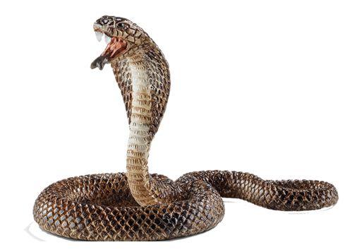 SCHLEICH 14733 kobra (hos Bl.a toys R us)
