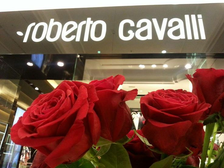 Roberto Cavalli store rising through the roses