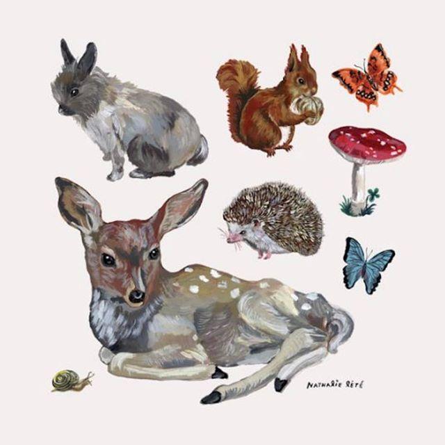 Animal wall stickers from Nathalie Lete - an easy way to upgrade any room. 27 beautiful stickers   DKK 449. Shop link in bio.  #studiominishop #nathalielété #wallstickers #kidsroom #kidsdecor #kidsinterior #børneværelse #børneinteriør