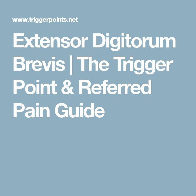 Extensor Digitorum Brevis | The Trigger Point & Referred Pain Guide