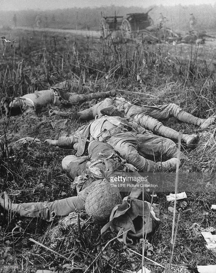 Dead Japanese soldiers lying next to road during Burma campaign.