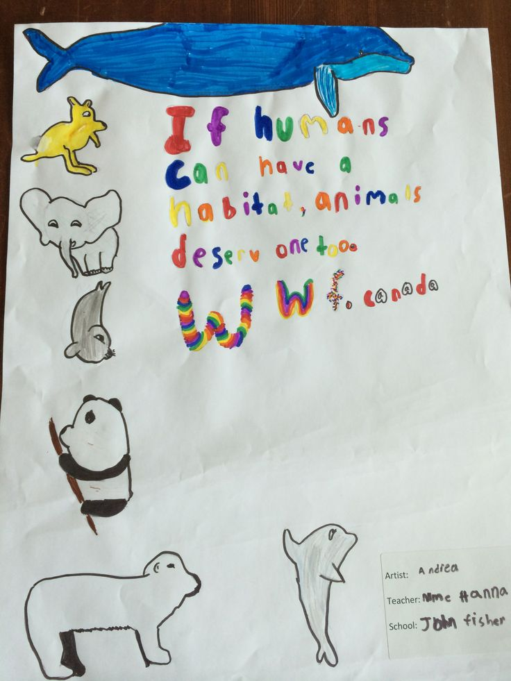 #Kids from across Ontario submit #artwork to motivate CN Tower climbers for WWF-Canada