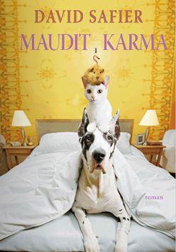 David Safier - Maudit karma