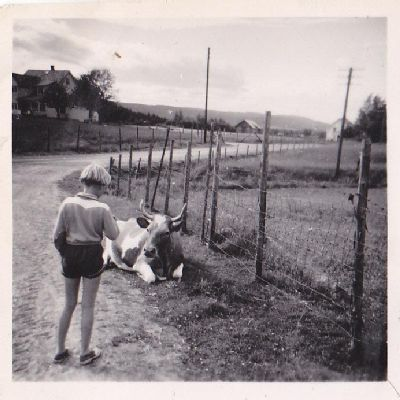 Stem på Ulla-Mona Kauteruds bidrag i TINEs fotokonkurranse