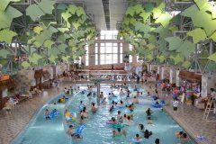 今年の夏休みは栃木県日光市の日光霧降 VIVAハワイアンで遊ぼう ここは全天候型の屋内温水プールで雨の日でも安心して遊ぶことができます キッズプール流れるプール噴水プール泡のプールアドベンチャープールなどプールの種類も豊富 ハワイアンフラダンスショーなども行われるので日本にいながらハワイ気分が味わえるのが魅力です  #栃木 #日光 #プール #水遊び #ハワイ tags[栃木県]