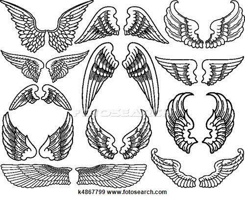 asas de anjo ficam - photo #47