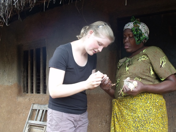 Vets without Borders vaccinating chicks in Tanzania.