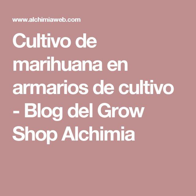 Cultivo de marihuana en armarios de cultivo - Blog del Grow Shop Alchimia