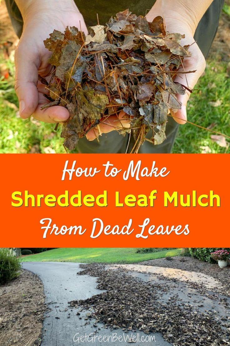 How to make shredded leaf mulch fast worx leaf mulcher