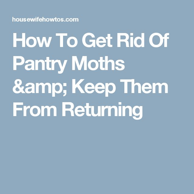 17 best ideas about pantry moths on pinterest clean washer vinegar natural cleaning recipes. Black Bedroom Furniture Sets. Home Design Ideas