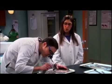 The Big Bang Theory - Locus Coeruleus ITA - YouTube