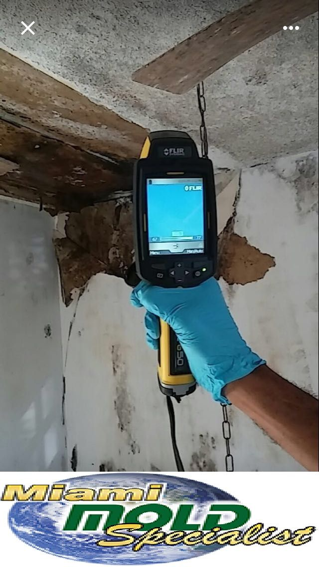 We are leading #MoldRemovalFL, #MoldInspectionFL, #MoldRemediationFlorida, #MoldRemoval,#MoldTesting in Miami Florida Service Provider. Our Services Include: Mold Testing & #Remediation #Flood #Restoration #Air & #Surface Sample Testing FREE Consultations