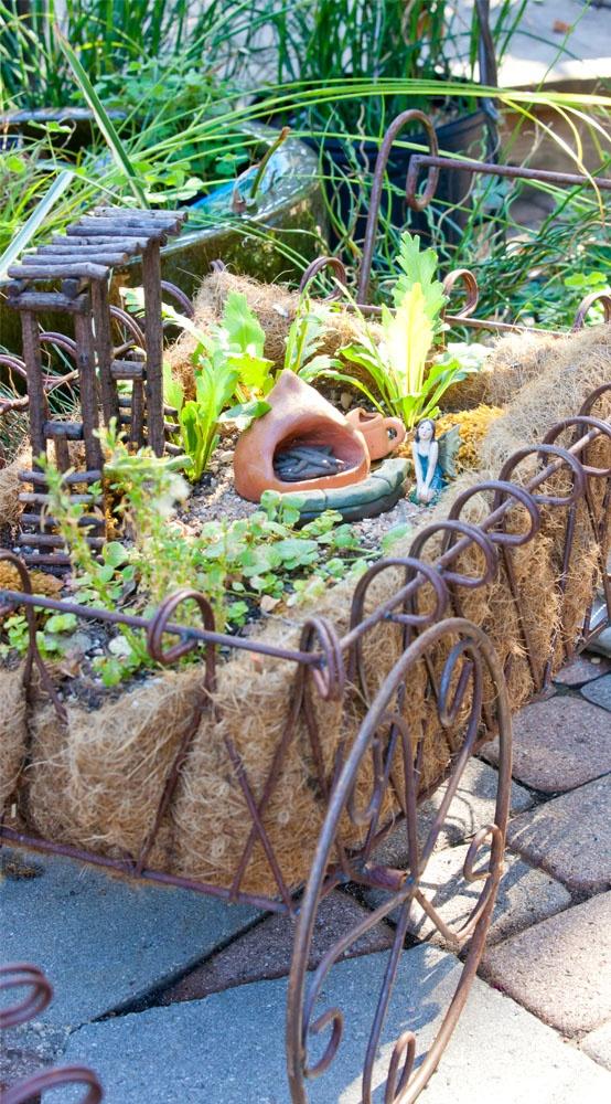 Fairy garden in wheel barrel container fairy gardens pinterest - Fairy garden containers ...
