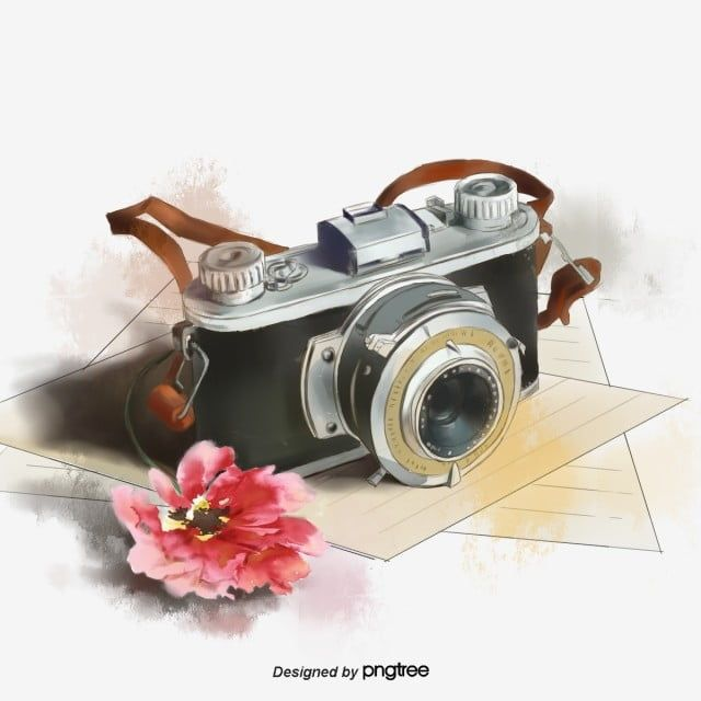 Flower Elements Of Hand Painted Travel Camera Photograph Photography Travel Png Transparent Clipart Image And Psd File For Free Download Camera Art Camera Logo Vintage Camera Logo