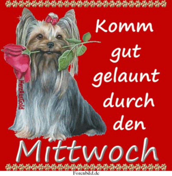 Hey Good Morning In German : Best mittwoch images on pinterest