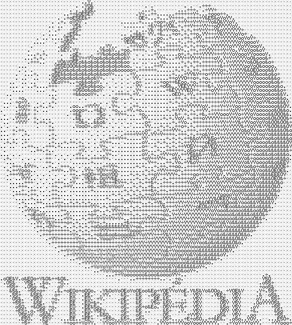 WP logo ASCII art 7857 chars.png