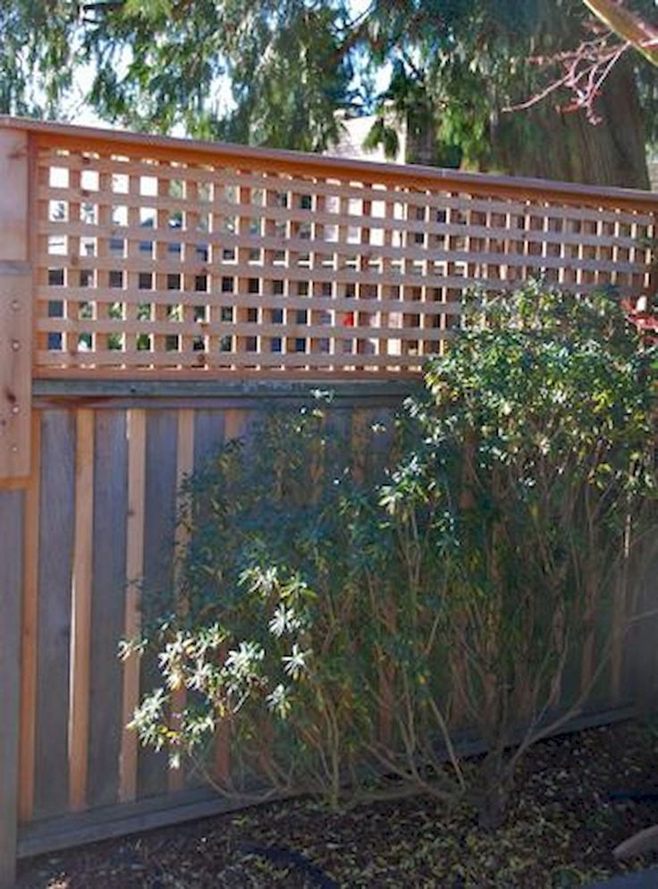 The 25 best cheap privacy fence ideas on pinterest for Cheap fence screening