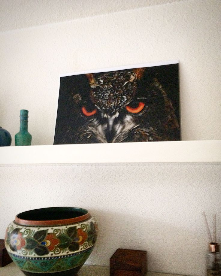 Owl Digital Art/drawing as house decoration by Assie's Art.