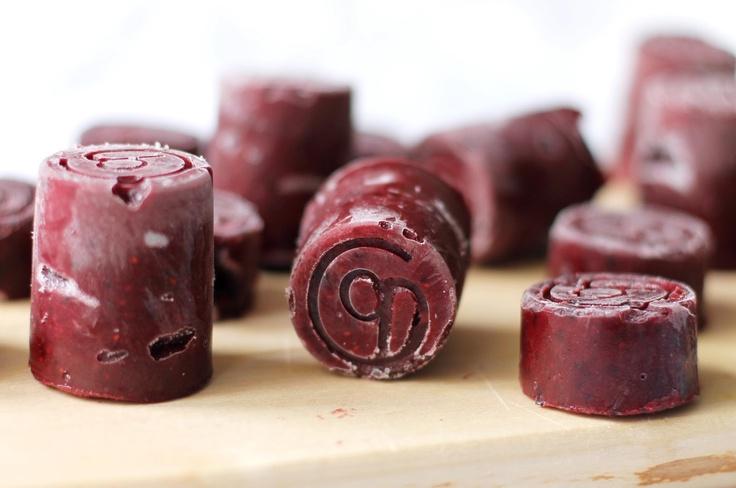 lilla matdériven: Vinbärs- och aprikospuré