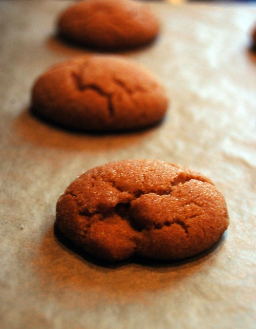 Ginger Molasses Cookie | My Cupcakes and Cookies | Pinterest