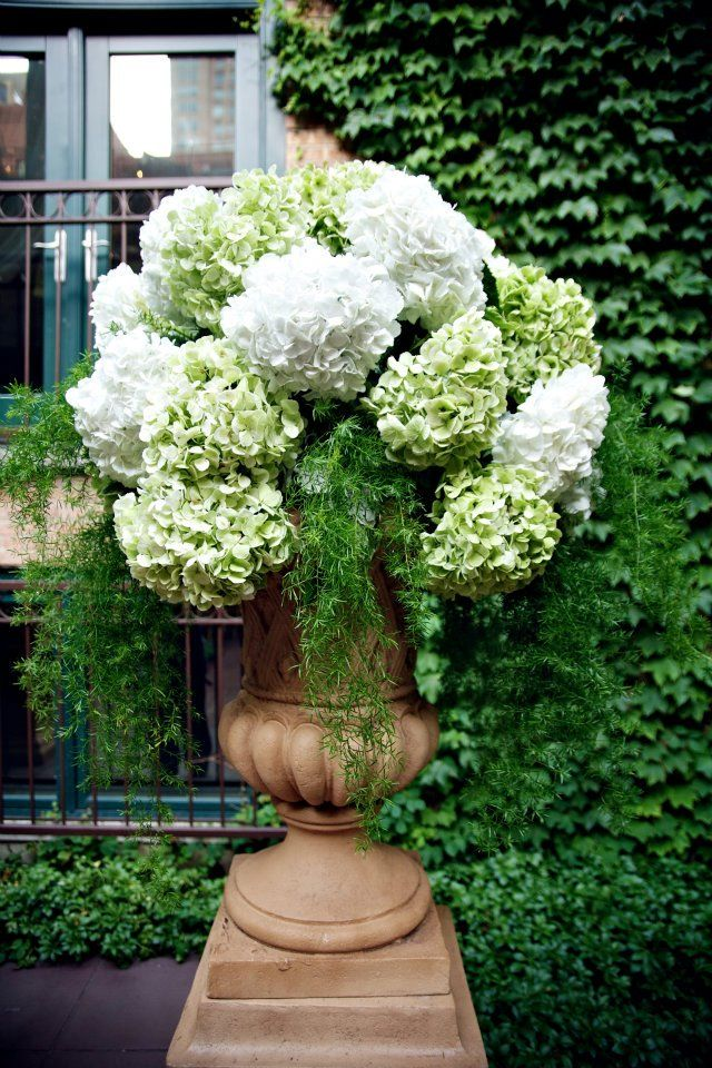 Large hydrangea arrangements