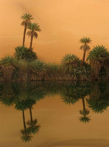 4 El Sahara es el paisaje de desierto por excelencia, un mar de arena al norte de África que ofrece postales hermosas abarcando unos nueve millones cuadrados de superficie: