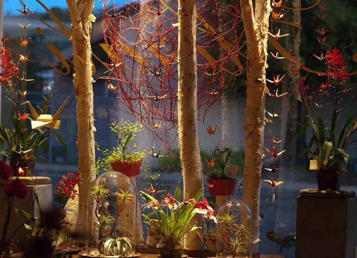 beautiful flower shop window