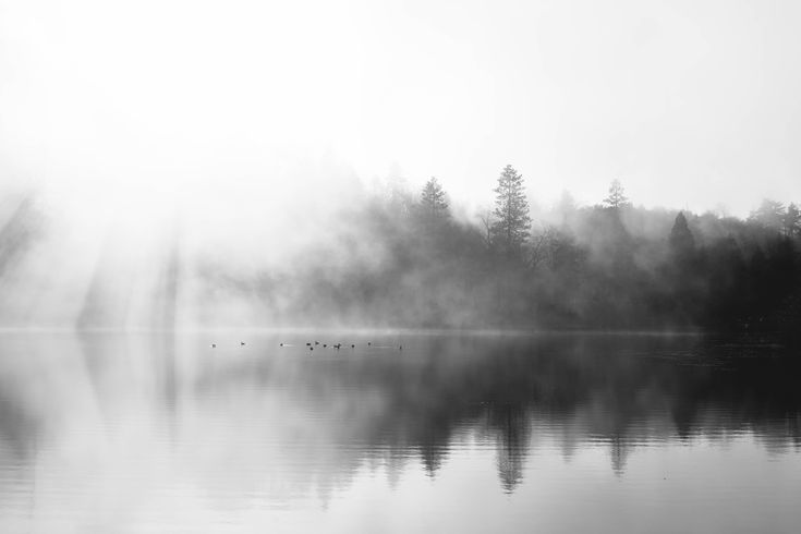 The fog rolling in at Jenks Lake. San Bernardino National Forest CA [OC] [5616x3744]