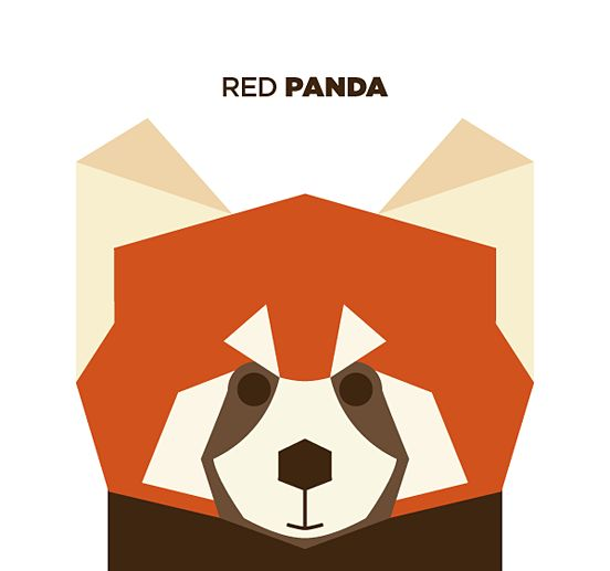50 Animals Illustrations Drew with Simple Shapes