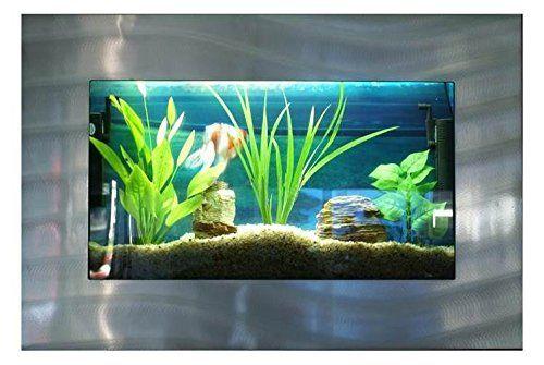 Bayshore Aquarium B1SSLVR Medium Rectangular Wall Aquarium, Silver – My Aquarium Store